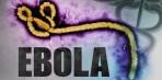 ebola viru