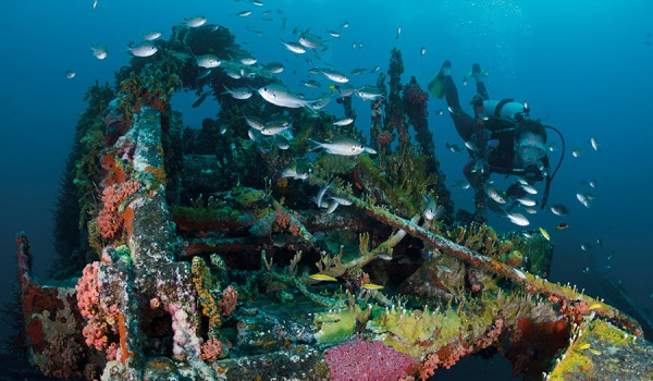 New & Exciting Festival Coming To Grenada Later This Year To Embrace Diving Lovers